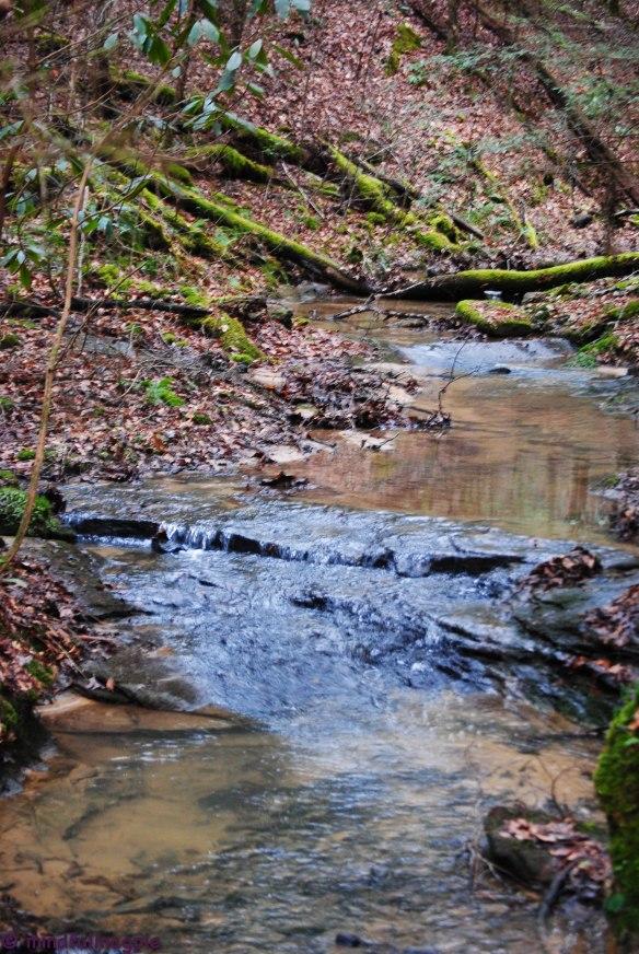 cumberland falls-152