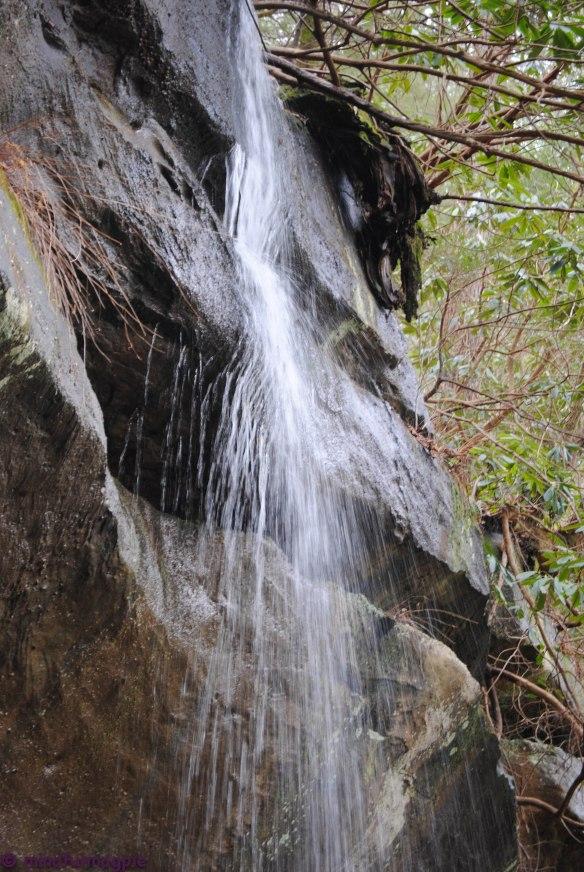 cumberland falls-178